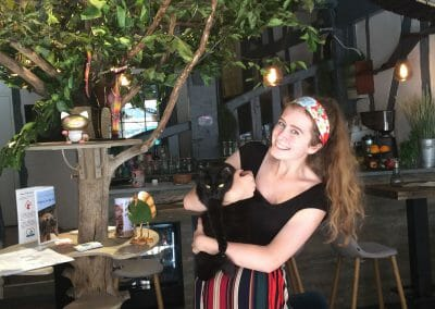 Cafe Work Experience Abroad Placement Cat Cafe