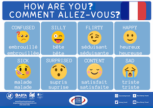How Are You - French